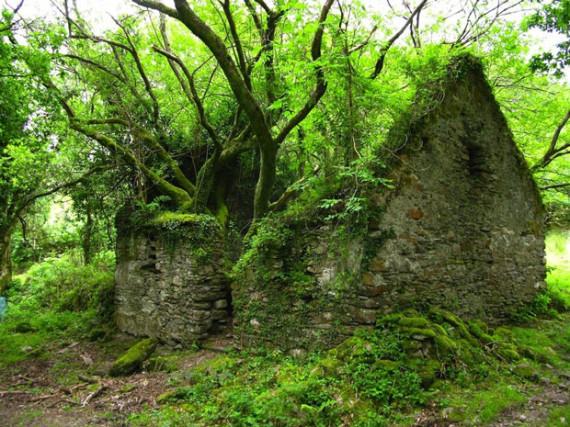 Une maison sur le Kerry Way, sentier pédestre entre Sneem et Kenmare en Irlande