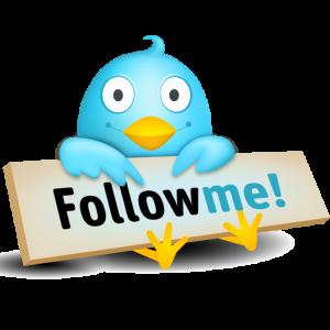Twitter déclare 255 millions de membres mensuels actifs