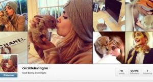 Le lapin de cara delevingne a un compte Instagram