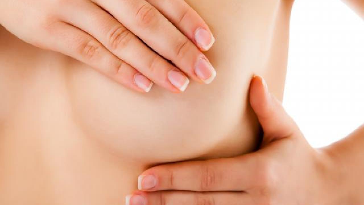 Cancer du sein, la protéine ELF5 en cause