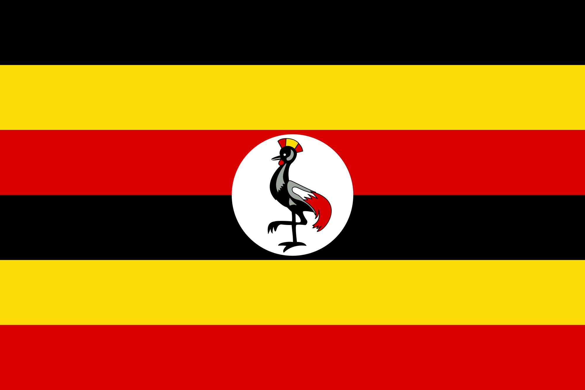 Ouganda: Quatre ans de prisons pour des exciseurs