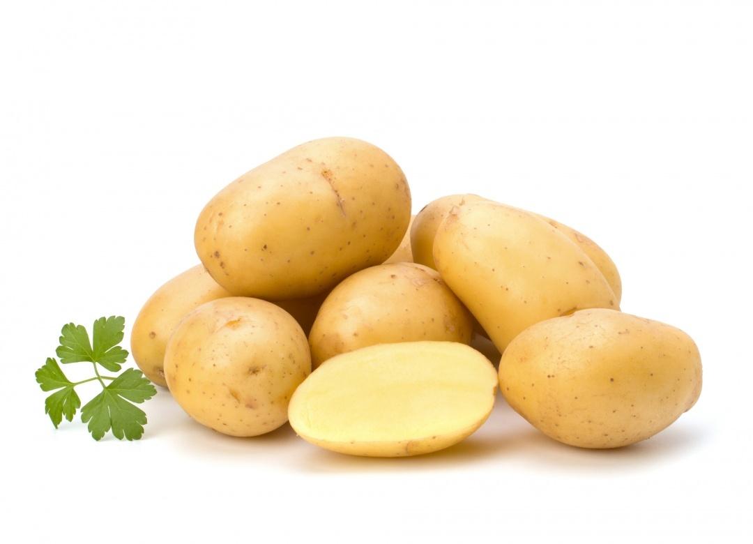 Un extrait de pomme de terre limiterait la prise de poids