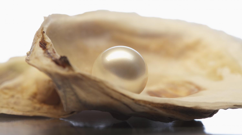 Au marché de Saint-Jory, une habituée a trouvé deux perles dans les huîtres