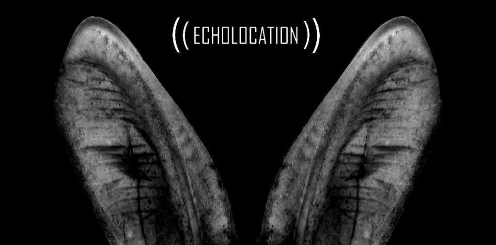 L'écholocation fonctionne avec personnes ayant une déficience visuelle