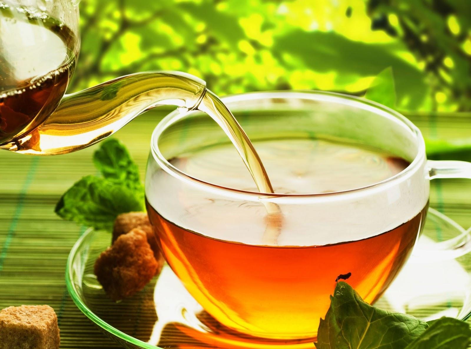 L'effet bénéfique du thé vert sur les cellules tumorales du cancer de la bouche