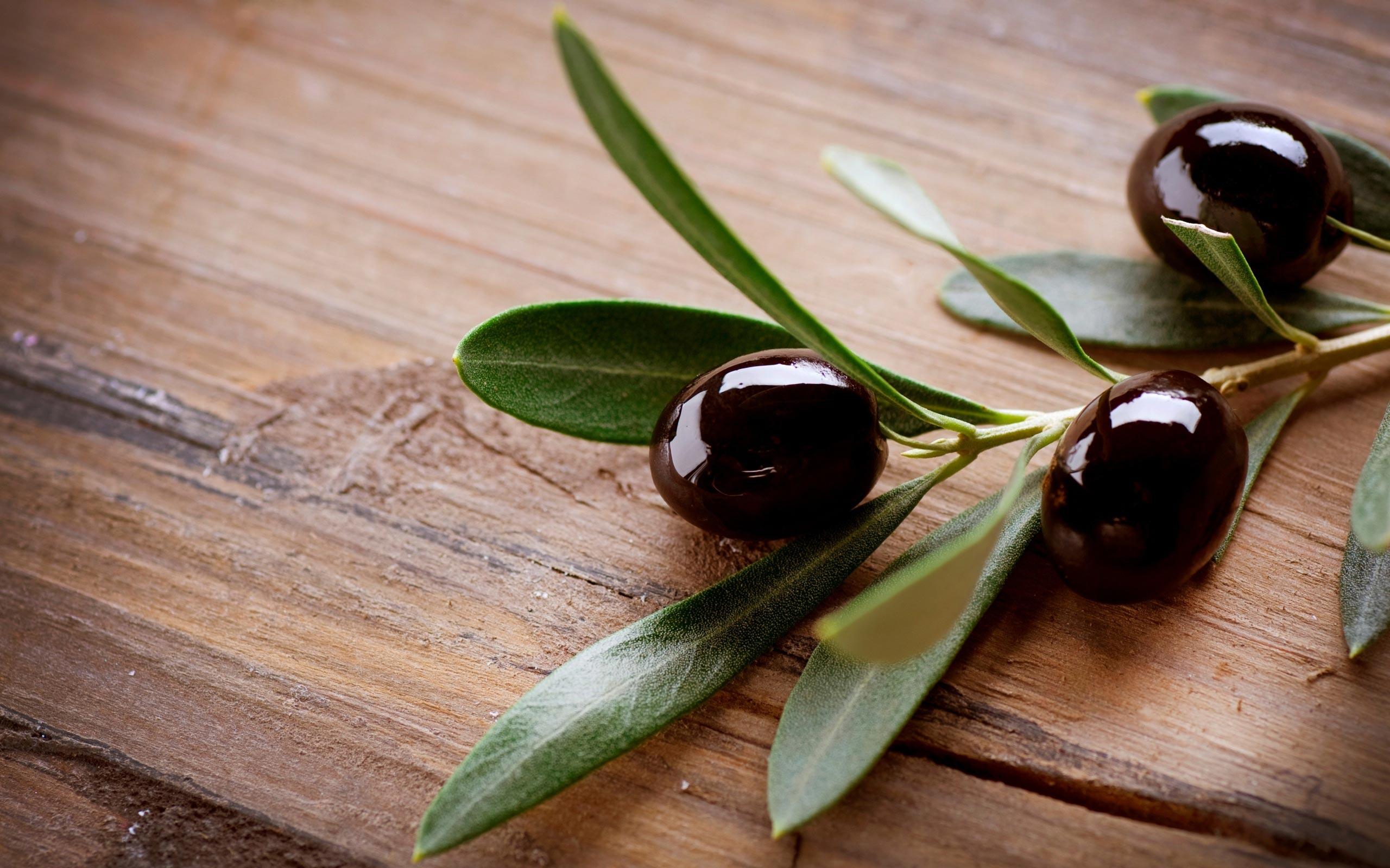Pourquoi consommer des olives