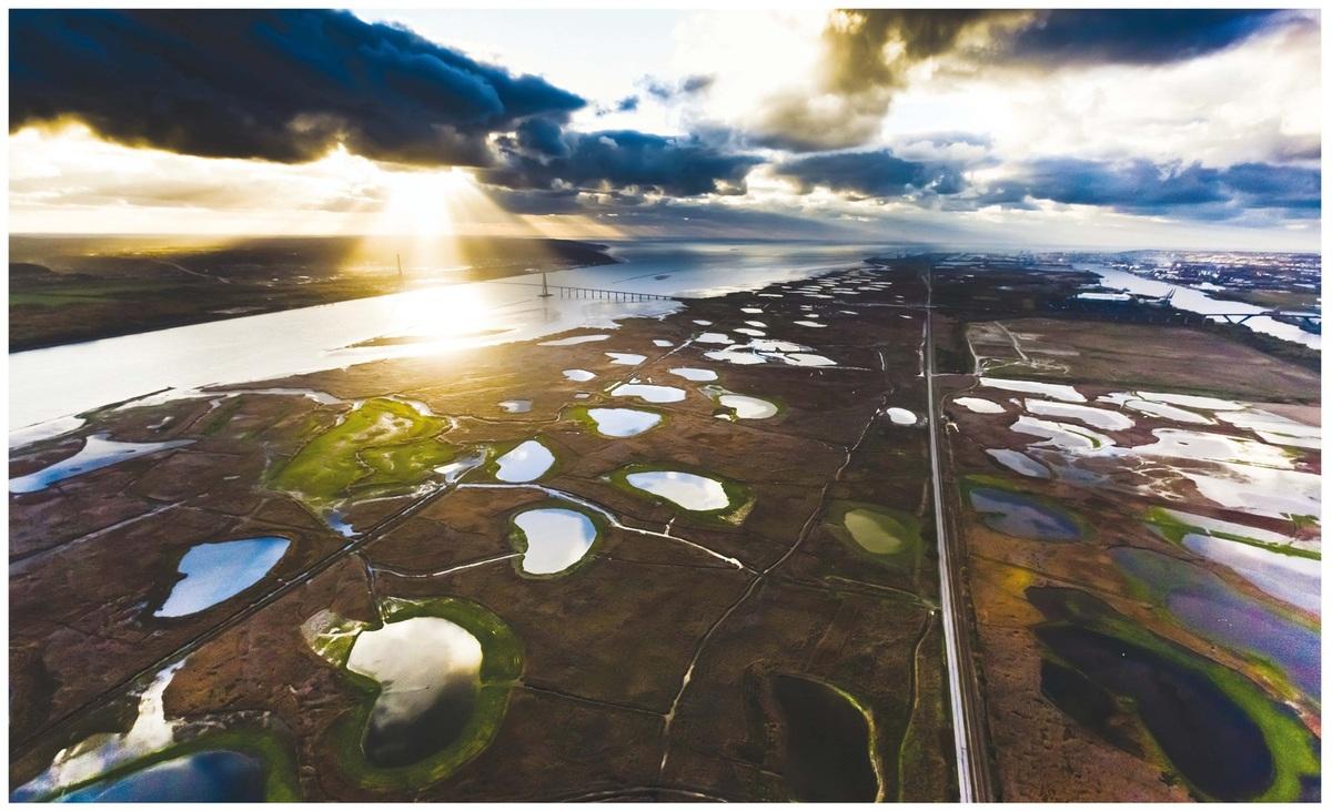 Thalassa - L'estuaire de la Seine: Un monde de paradoxes en direct sur France 3