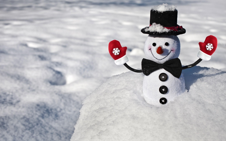 Une bourgade japonaise détient le record mondial du plus grand nombre de bonhommes de neige