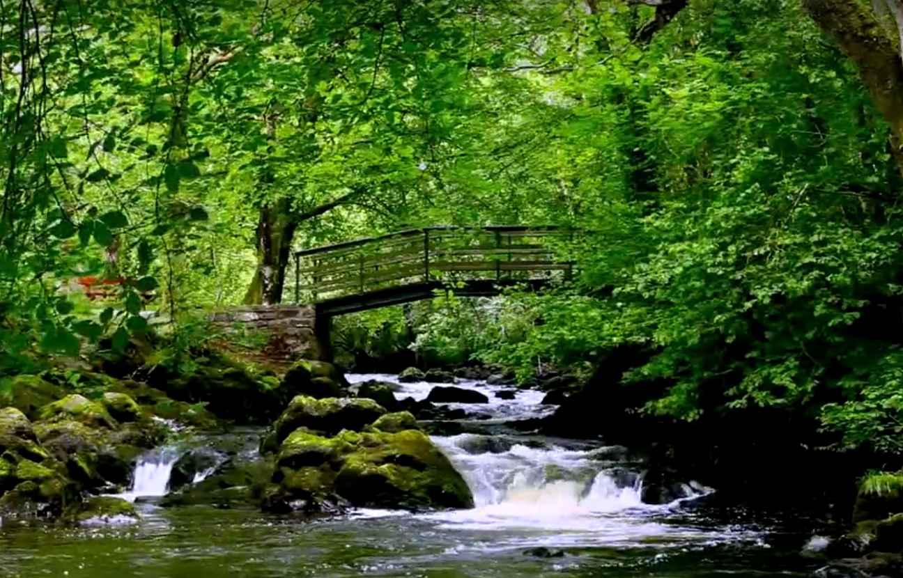 La cascade irlandaise qui aide 6 millions d'insomniaques